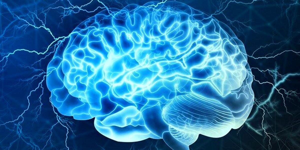 neurociencia e dependencia quimica